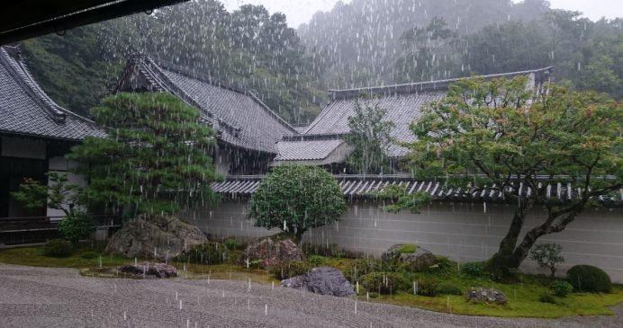 Aniden Bastıran Yağmur-Kyoto