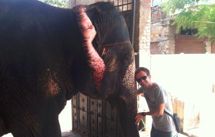 Fil İle İlk Buluşma-Jaipur