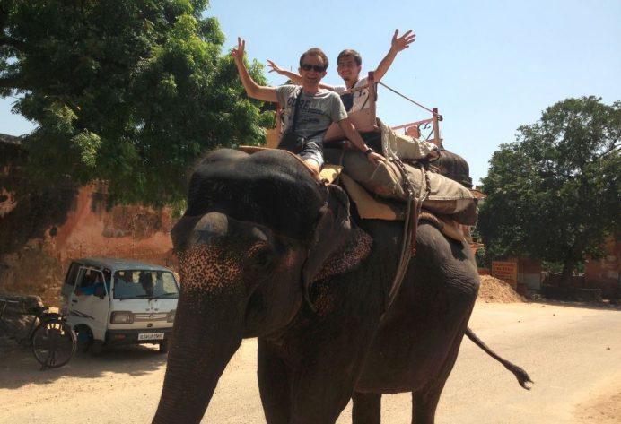 Jaipur Sokaklarında Sıradan Bir Gün