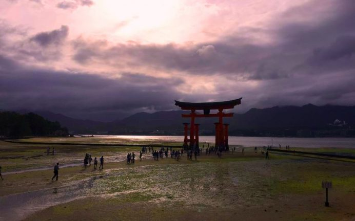 Floating Torii-Sular Çekildikten Sonra