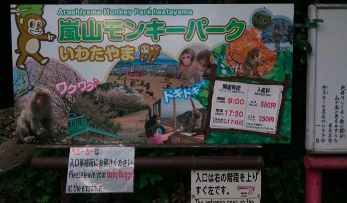Arashiyama Maymun Parkı